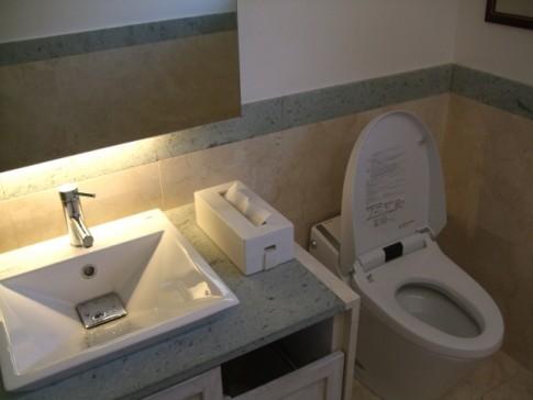 新築一戸建て階段下トイレ収納間取り