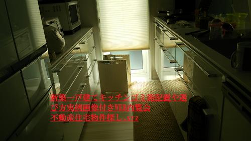 新築一戸建て注文住宅キッチンゴミ箱配置実例画像WEB内覧会
