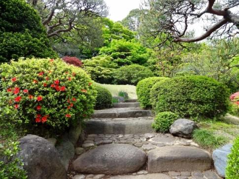 新築一戸建てランニングコスト庭付き庭作り