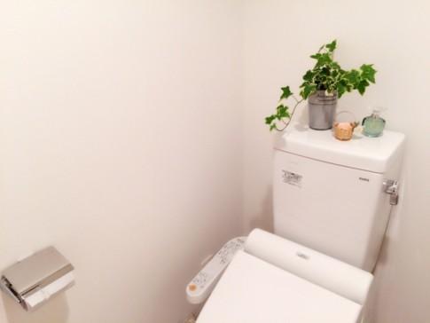 新築トイレのメーカー選び方注意点
