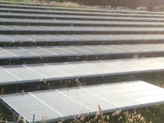 太陽光発電売電価格の動き2017
