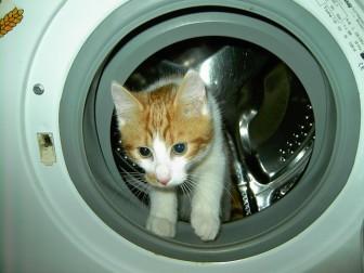 新築洗面所寒さ対策間取り注意点