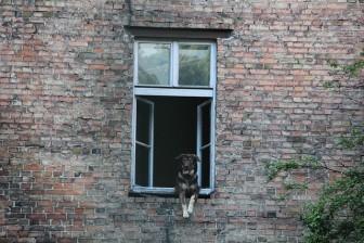 戸建て小窓カーテンの必要性