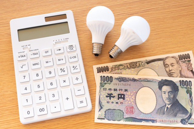 電気代支払データ