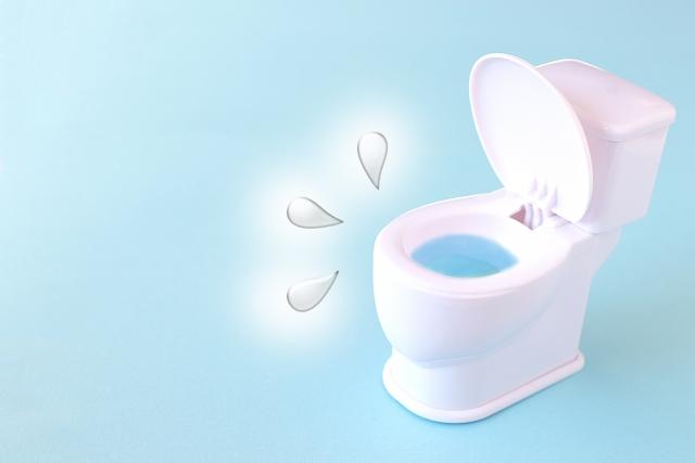 新築トイレつまり原因として節水対策が原因の内容とは?