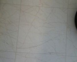 新築トイレの床の色画像WEB内覧会