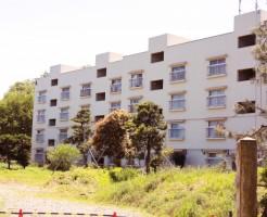 賃貸と一戸建て購入比較|購入のきっかけ