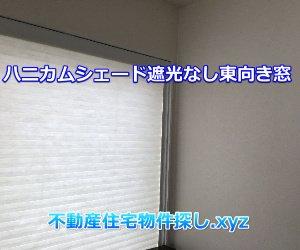 ハニカムシェード遮光なし東向き窓実例画像