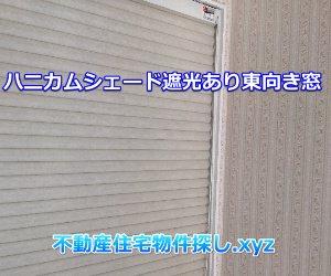 ハニカムシェード遮光タイプ東向き窓実例画像