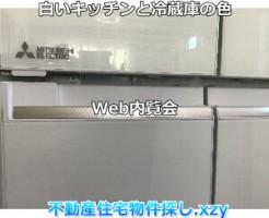 白いキッチンと冷蔵庫の色実例画像