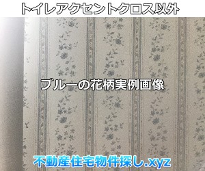 トイレアクセントクロス以外のブルー実例画像