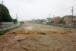河川の氾濫被害と保険の見直し